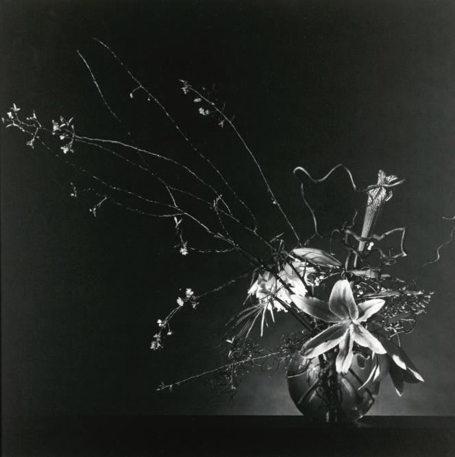 Robert Mapplethorpe:'FLOWER ARRANGEMENT', 1982