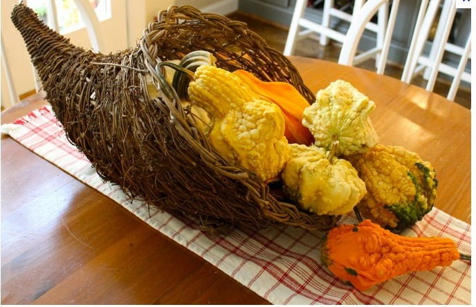Pic of a cornucopia basket dressed with gourds on table