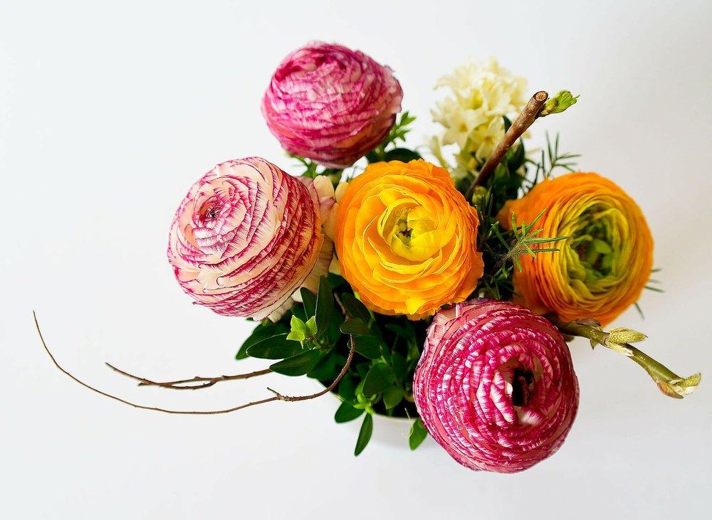 flowers-342532_1280.jpg