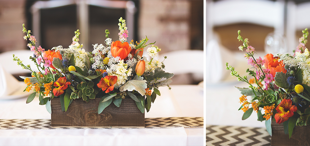 Nature Pointe | Albuquerque, NM | Liz Anne Photography 58