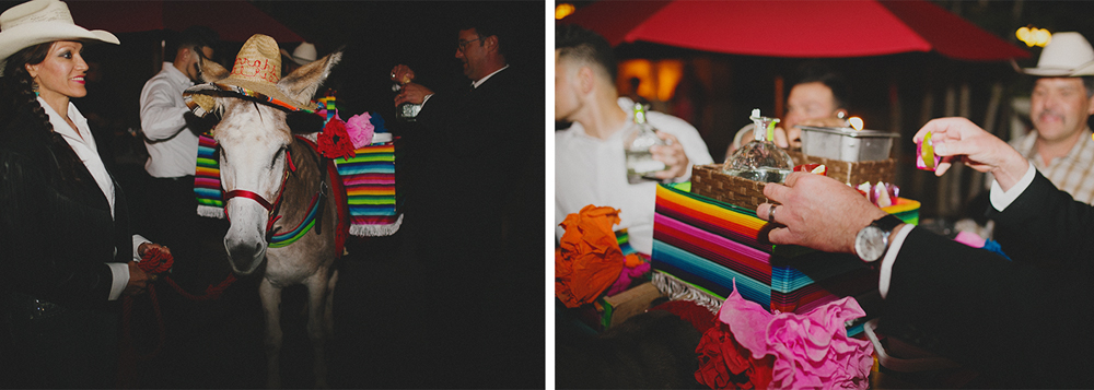 Nic + Taylor | La Posada | Santa Fe, New Mexico Wedding | Liz Anne Photography 093.jpg