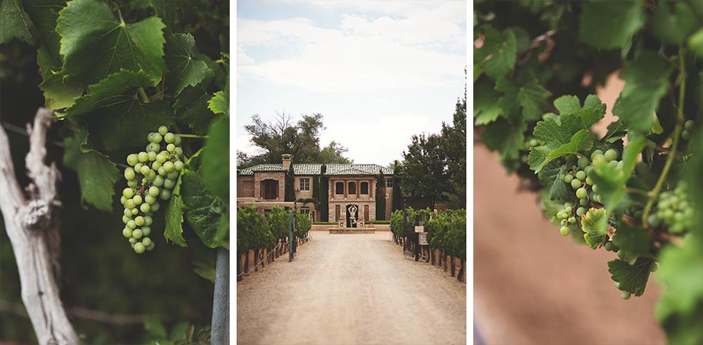 Casa Rondena Wedding | Albuquerque, NM | Liz Anne Photography 13.jpg