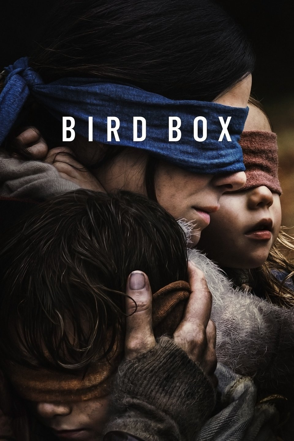 Bird Box Movie Sandra Bullock