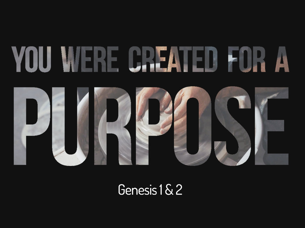 You Were Created FOr A Purpose.001.jpeg