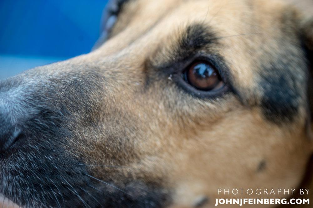 JohnJfeinberg.com-27.jpg