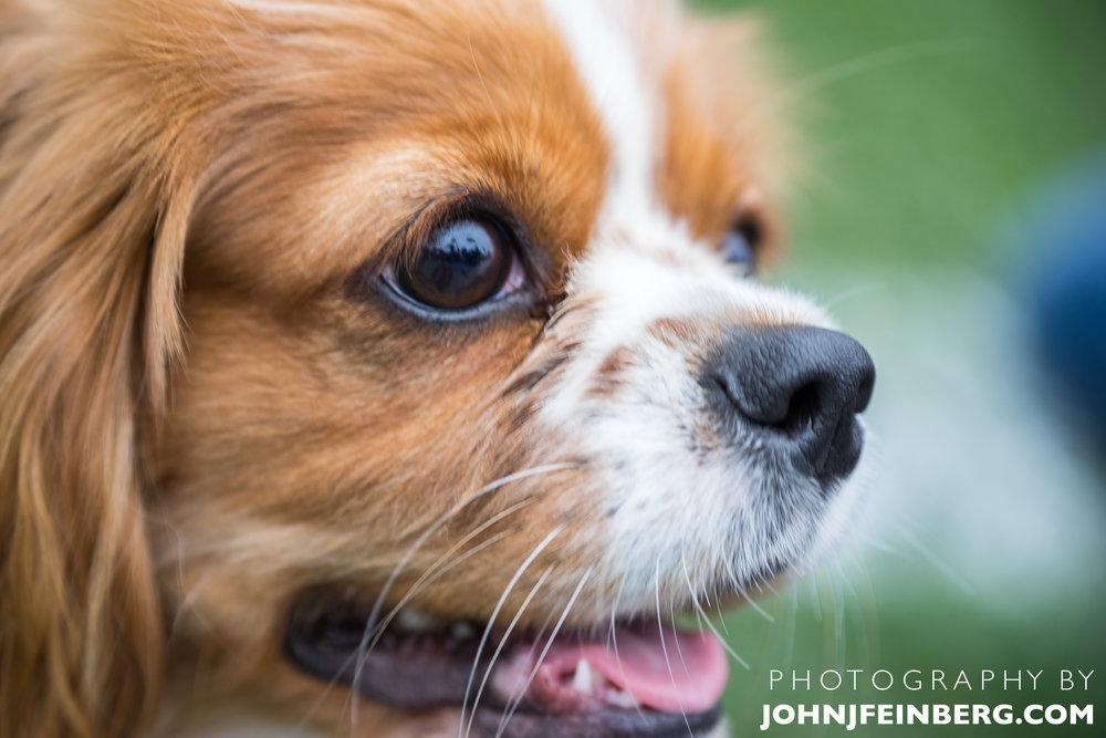 JohnJfeinberg.com-73.jpg