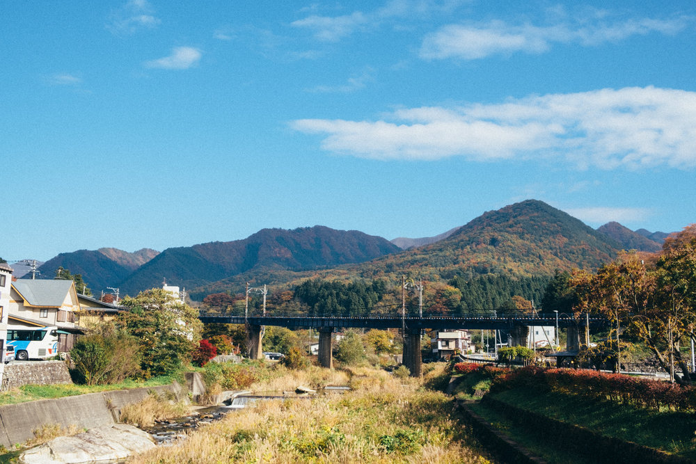 FUJI1981.jpg