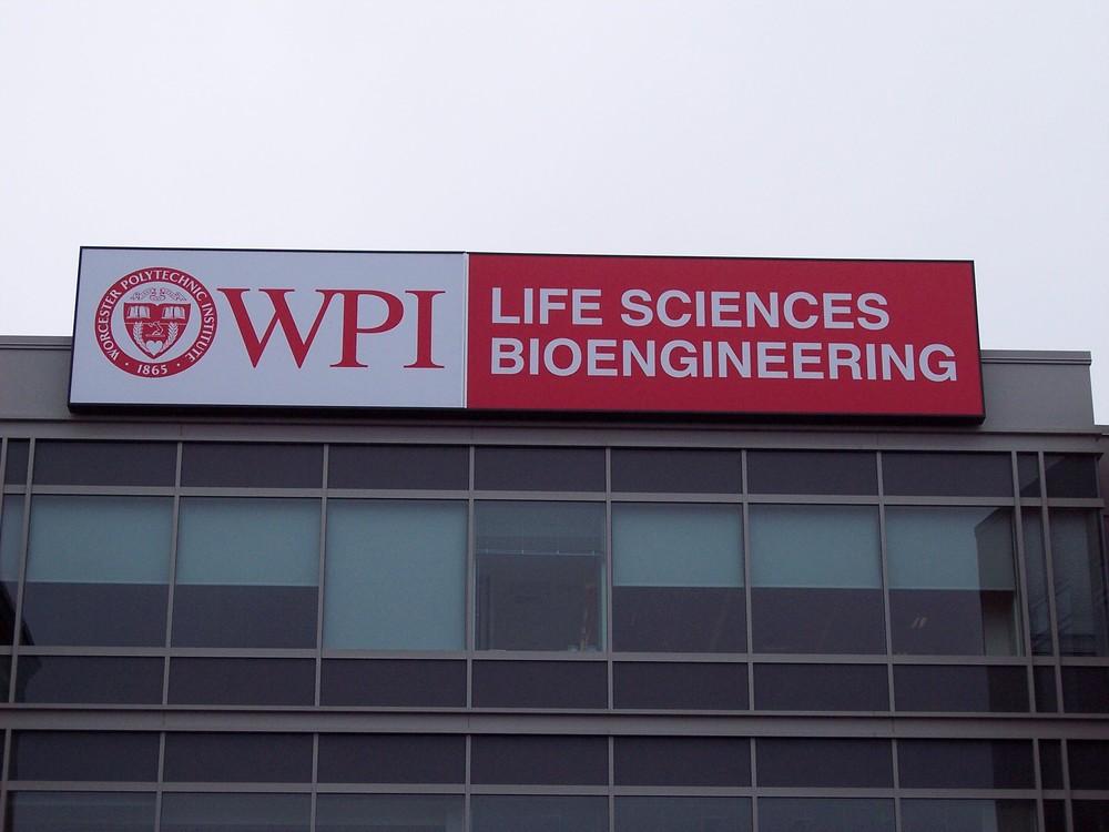 WPI_5_WEBSITE.jpg