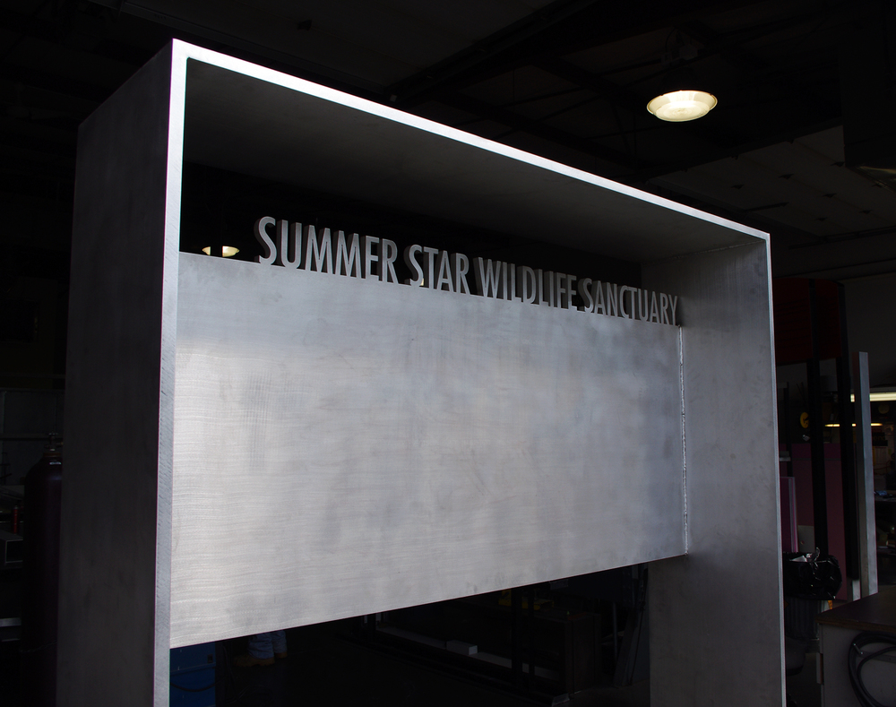 SUMMERSTAR_1_WEBSITE.jpg