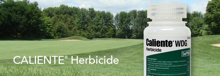 Caliente Herbicide.