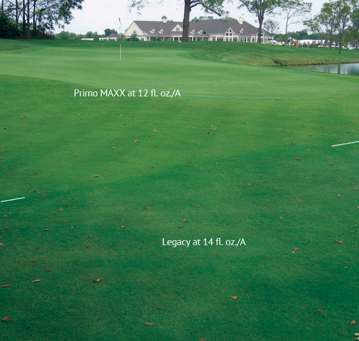 Creeping bentgrass fairway approach treated with Legacy and Primo MAXX®