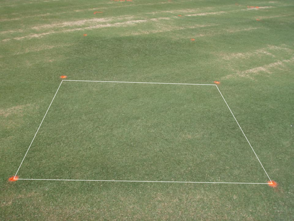 Legacy 12 fl oz/A - hybrid bermudagrass                   4 weeks after applicaiton