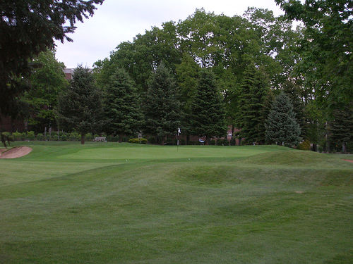 The 11th Green. Credit: Sir Putts-a-lot, Public Domain, commons.wikimedia.org