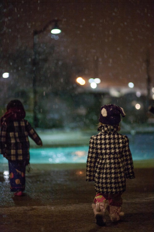 Snow in Homewood-2.jpg