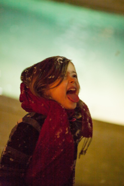 Snow in Homewood-3.jpg