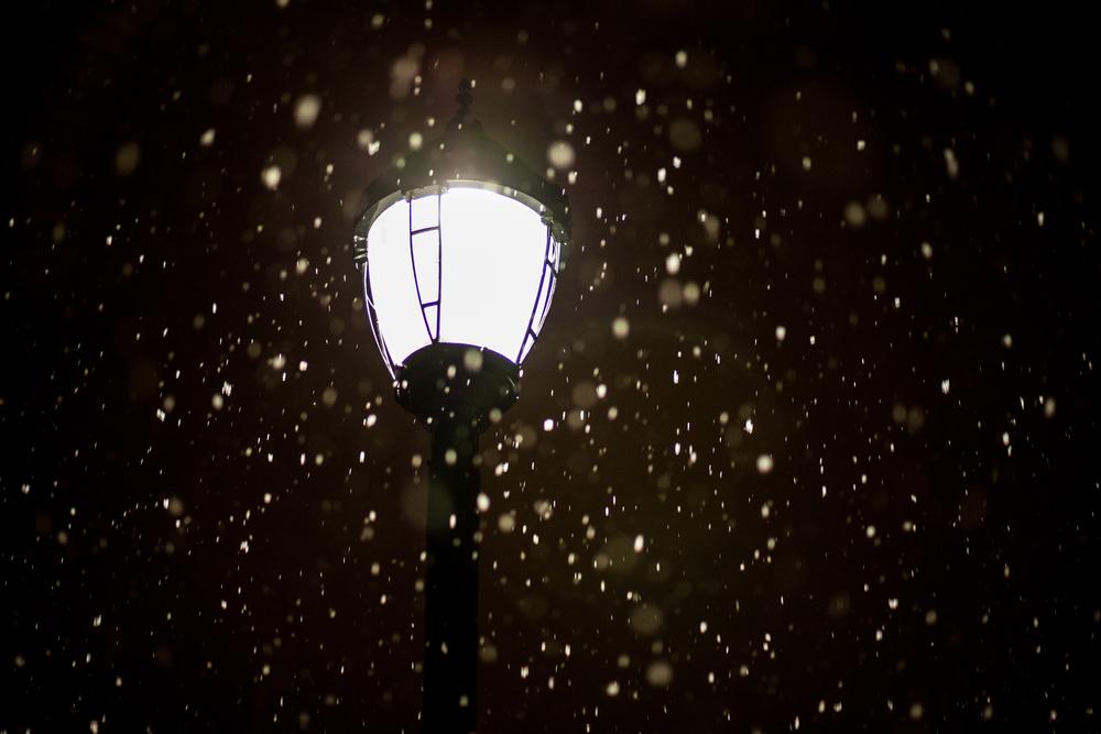Snow in Homewood-13.jpg