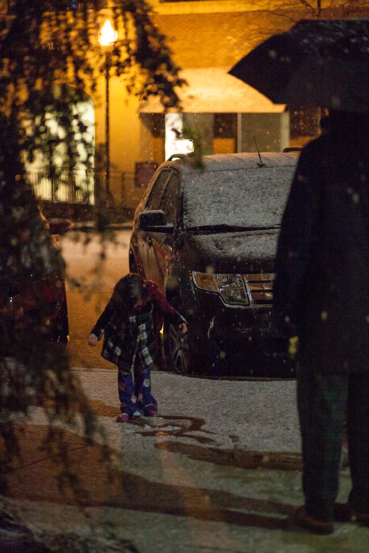 Snow in Homewood-12.jpg