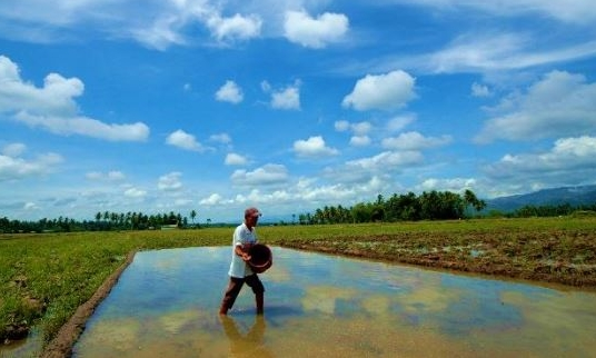 ORGANIC FARMING IN OPAL