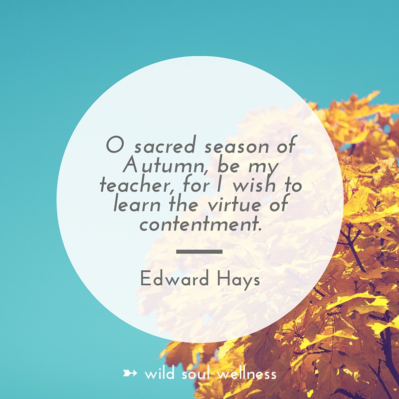 "»  CLICK TO TWEET  «  ""O sacred season of Autumn, be my teacher for I wish to learn the virtue of contentment."" —Edward Hays"