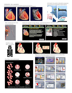 Cardiovascular samples to win interactive multimedia work.