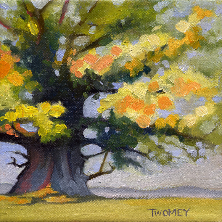The Ancient White Oak by Twomey