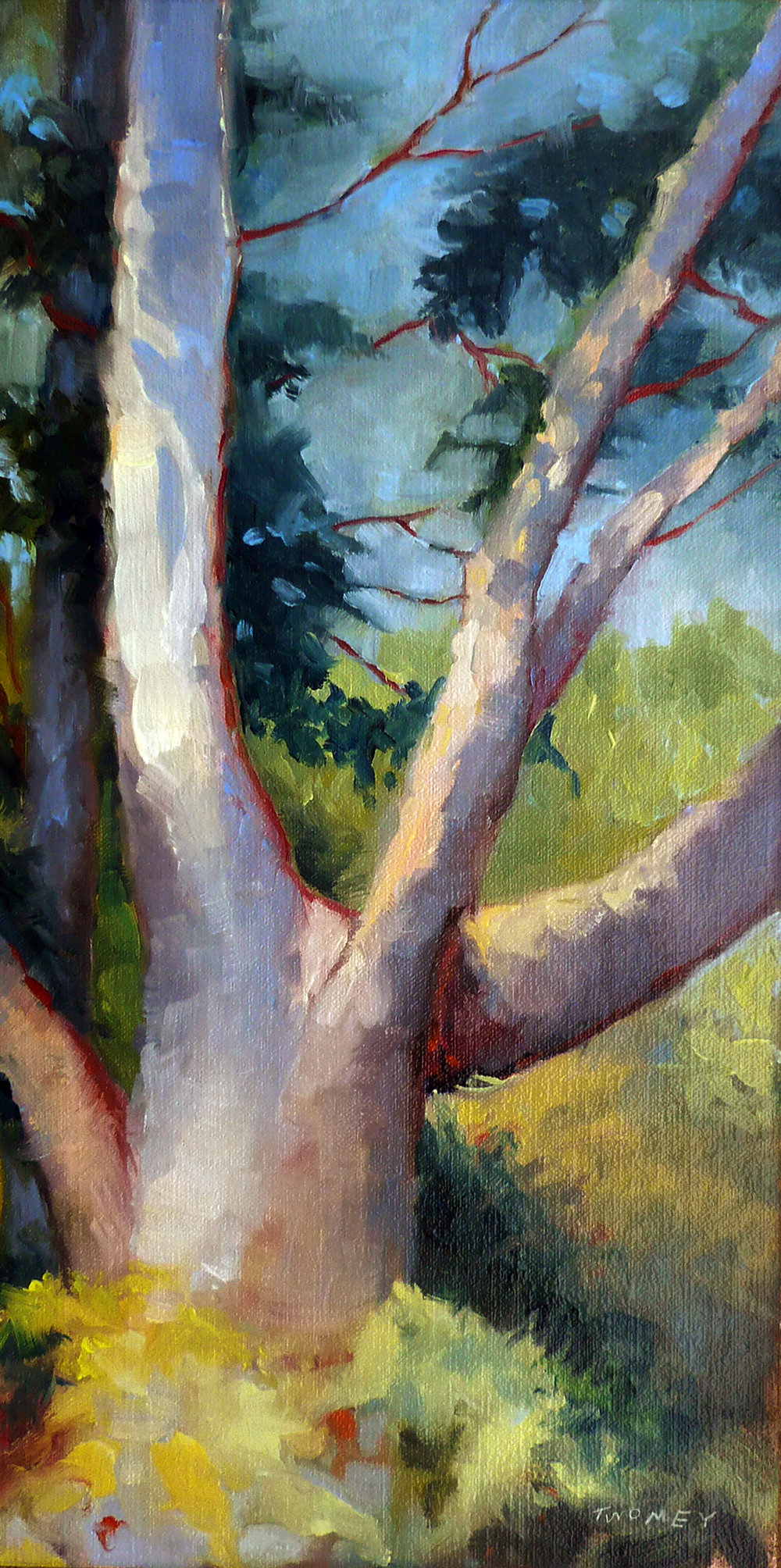"""Massive Summer Oak"" 16"" X 8"", Catherine Twomey"