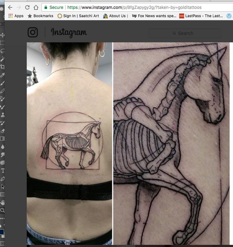 Tattooed DaVinci Piaffe horse (!)