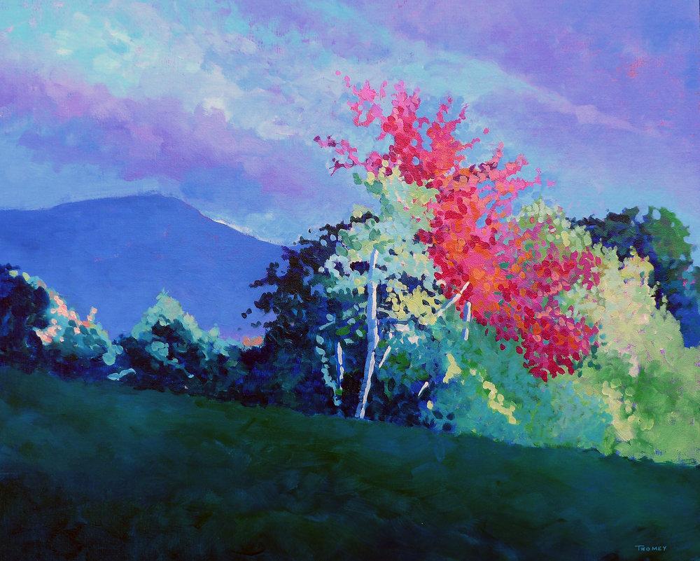 AutumnVermontLight.jpg