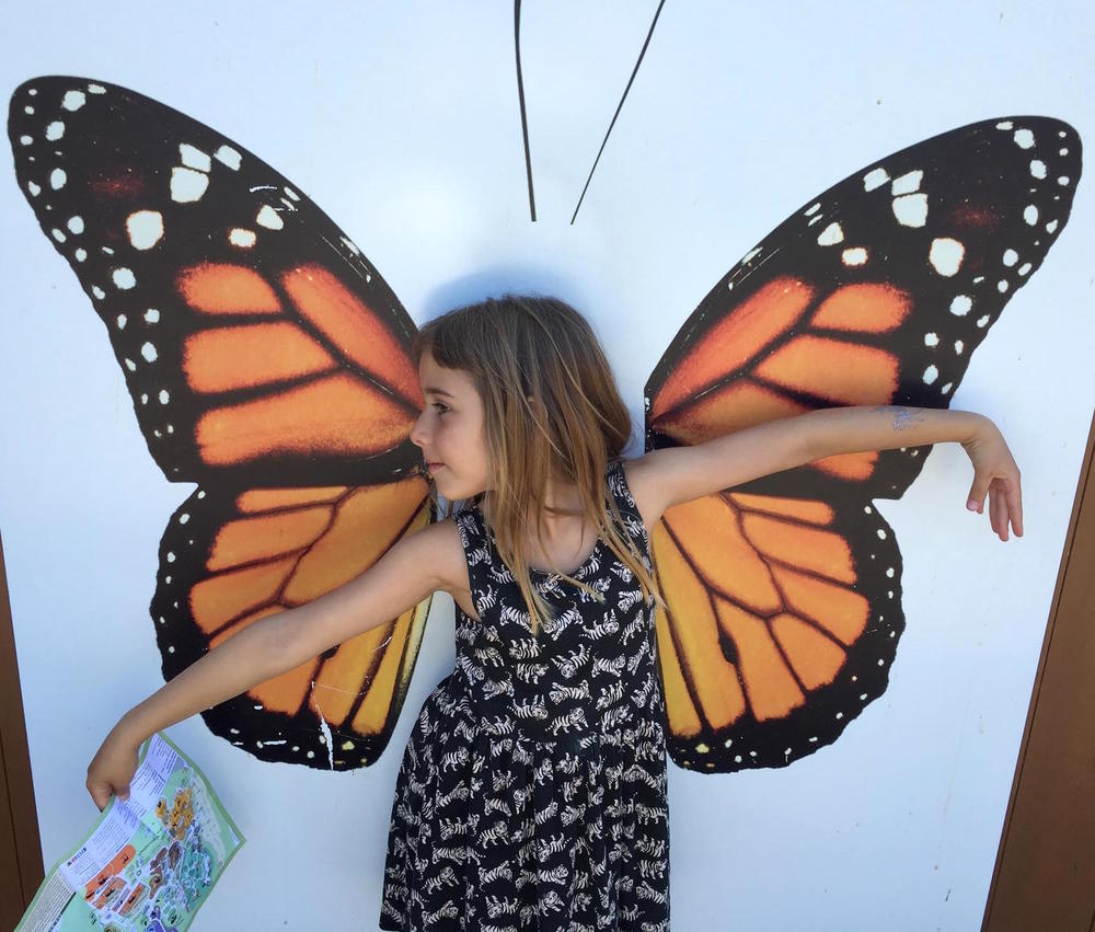 5. Siran.Butterfly_o.jpg