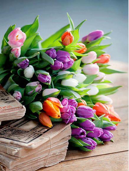 flowers.5.jpg