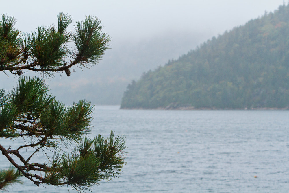 Somes Sound, MDI Marathon - photo by Kevin Morris