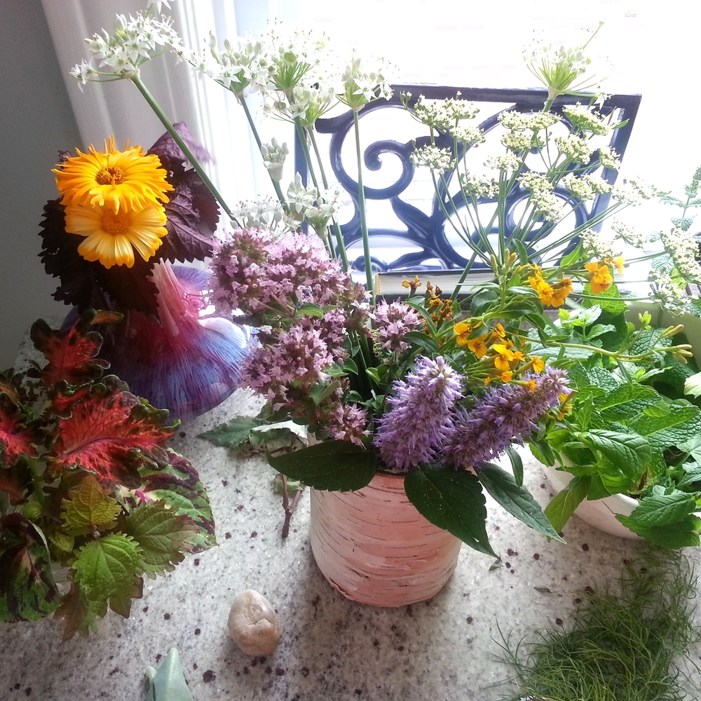 Bringing edible flowers and herbs indoors