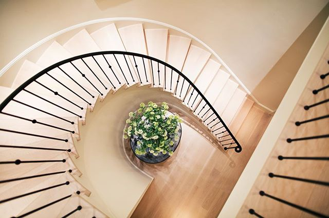 Staircase or work of art? Design by Alexandra Owen. . . . . . #owendesign #spiralstaircase #modernhouse #alexandraowen #modernstaircase #curvedstaircase #thespacesilike #inmyhouzz #sanfrancisco #interiordesign