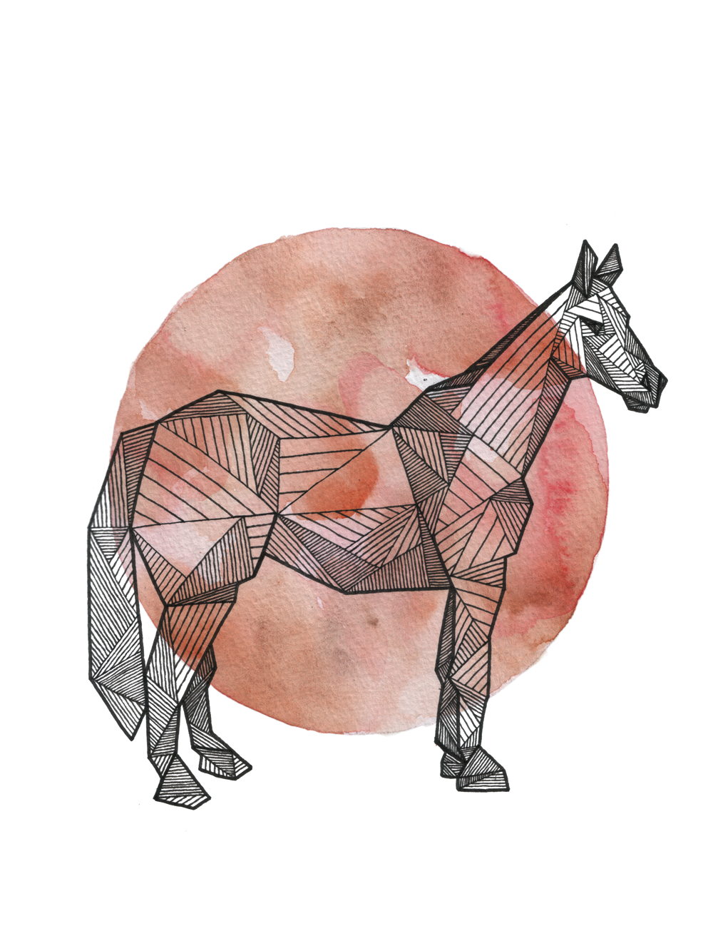 Horse_Clean_Web_1000px.png