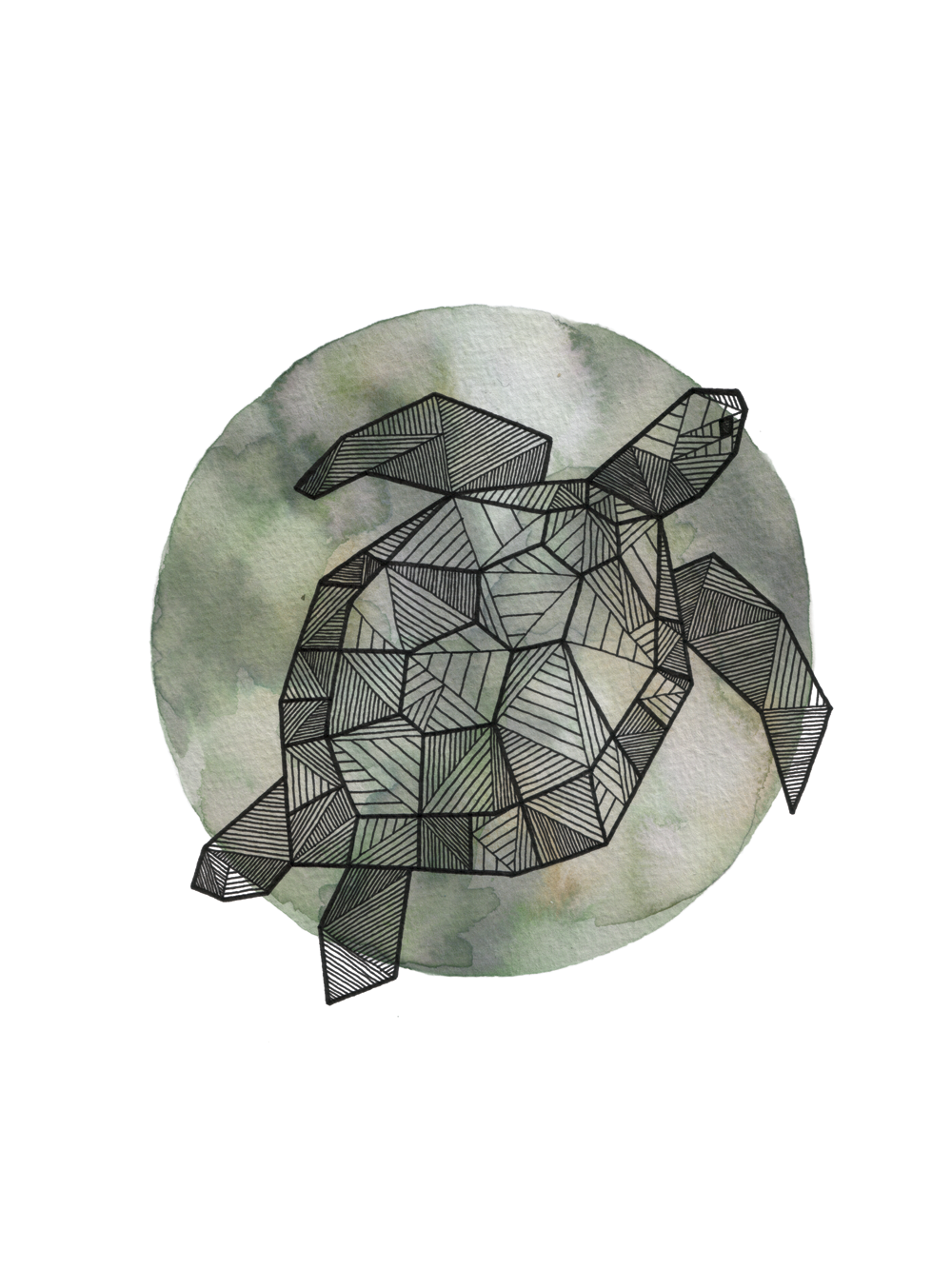 Seaturtle_Clean_Web_1000px.png