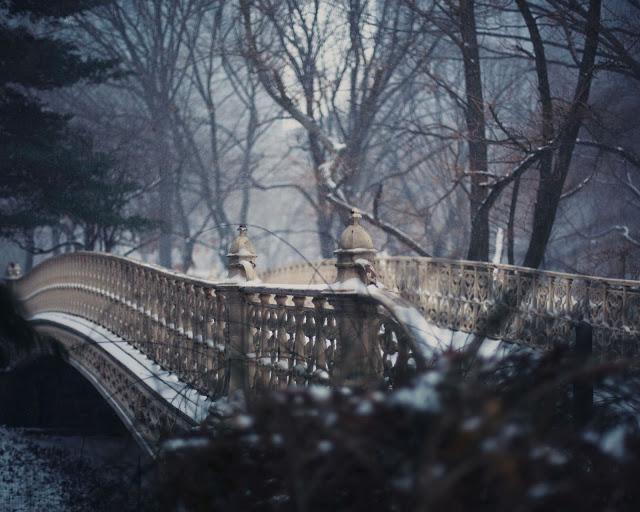 Snow_Central_Park8x10.jpg