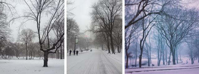 Winter_8.jpg