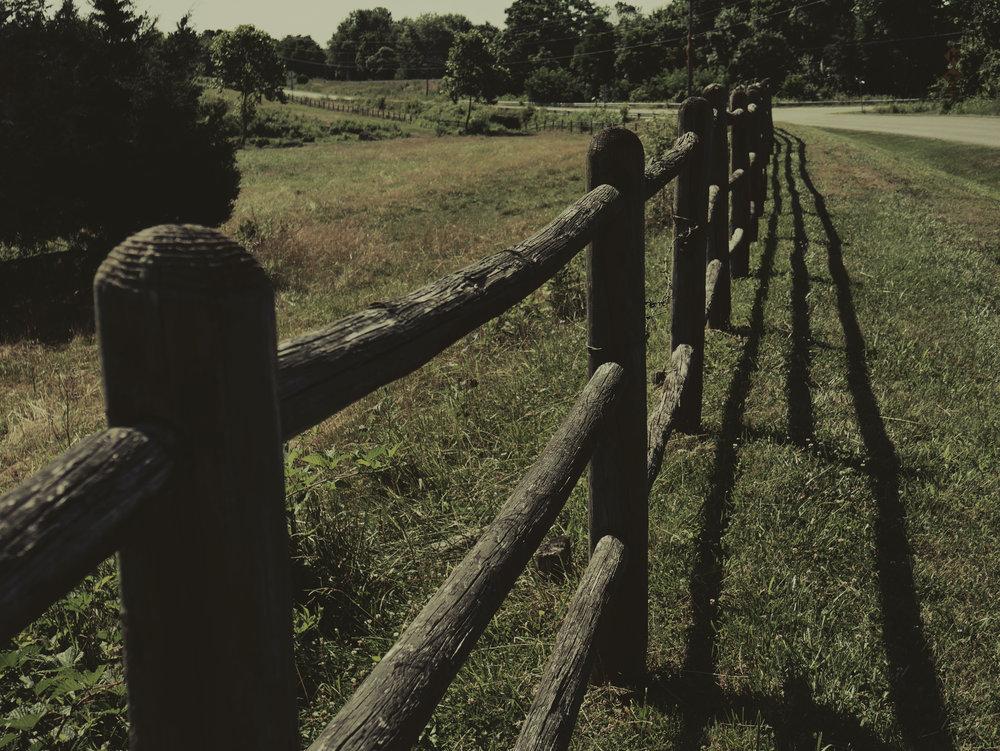 fenced.jpg