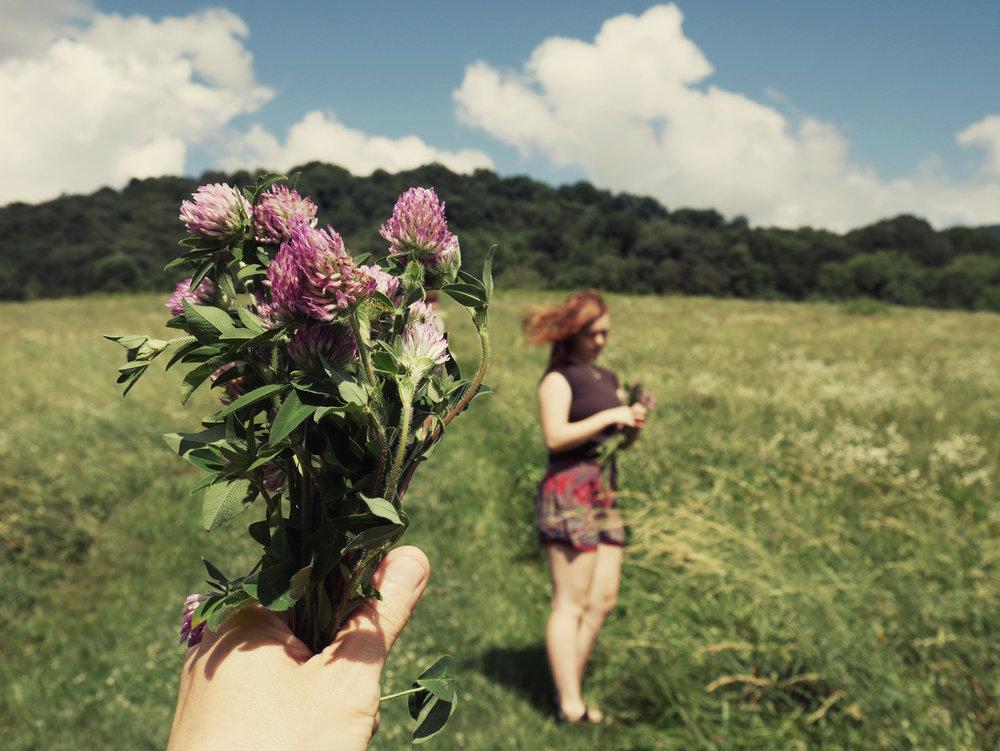 summer love.jpg
