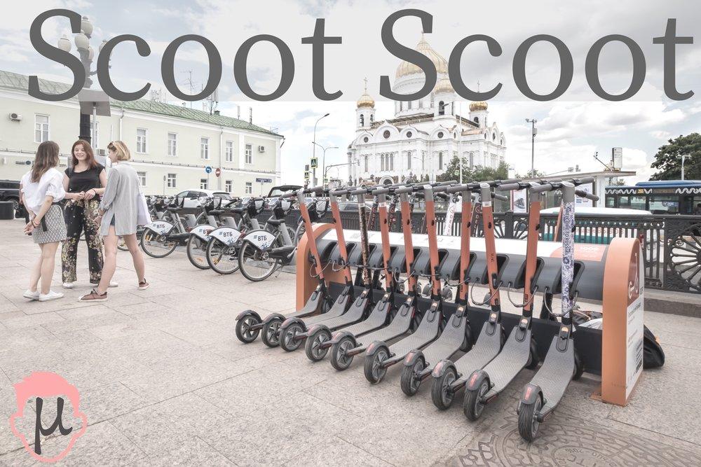 Scoot Scoot.jpg
