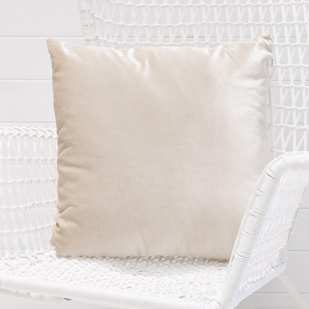 Ivory velvet cushion.jpg