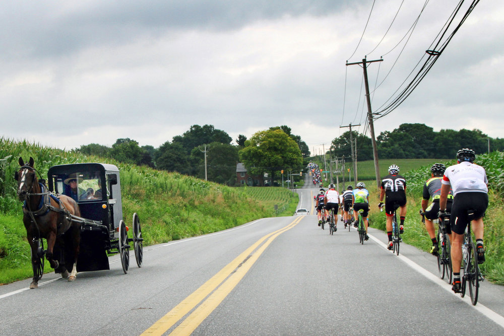 Farm to Fork Fondo - Pennsylvania Dutch cyclists passing an Amish horse drawn carriage on the way to a gourmet aid station