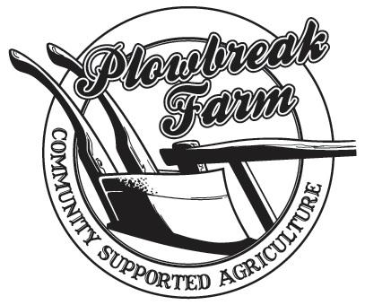 plow break.jpg