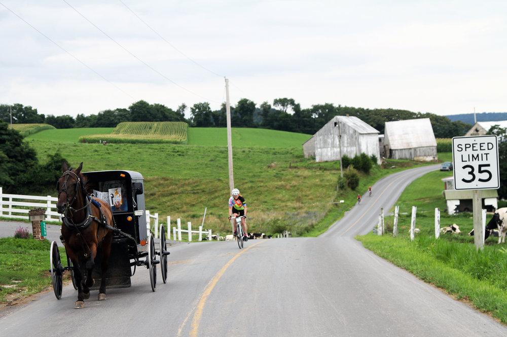 Pennsylvania Dutch Farm to Fork Fondo