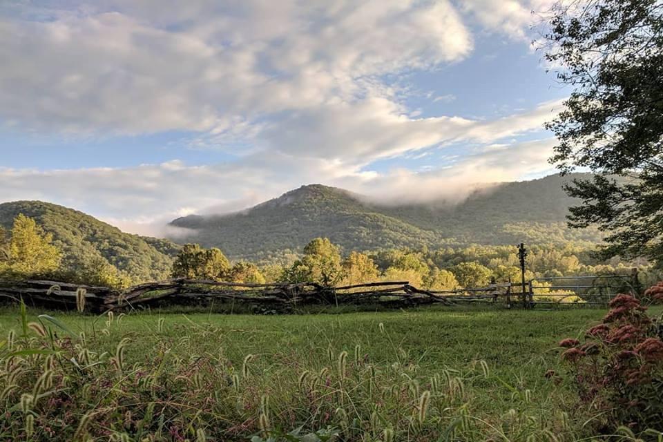 Hickory Nut Gap Farm Facebook photo.jpg
