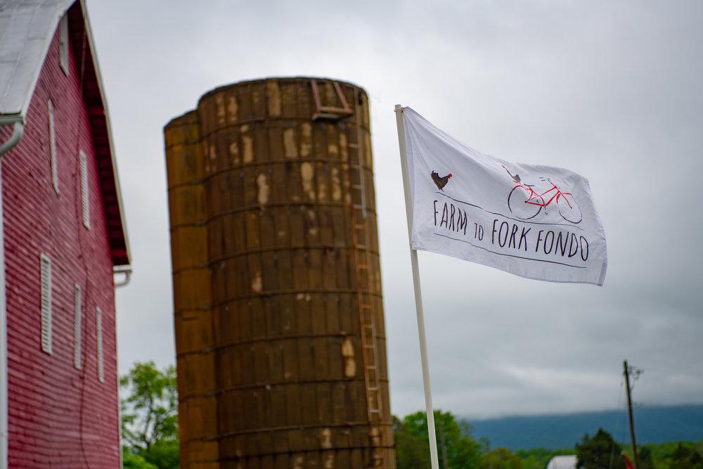 Farm to Fork Fondo 2018 - Shanandoah08.jpg