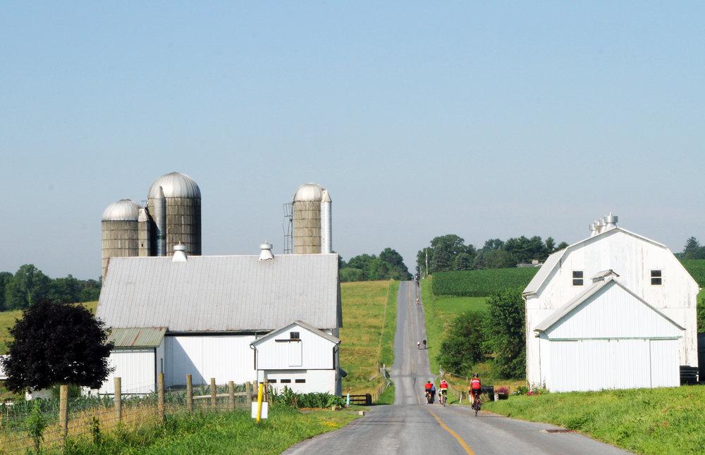 Farm to Fork Fondo 2018 -PADutch05.JPG