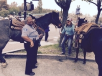 Sharon joking with Allison by pretending to give her a parking ticket while her horse is tied to the parking meter