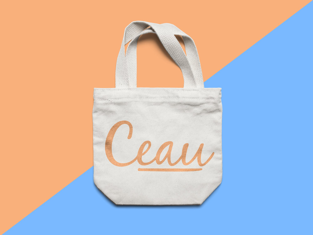 Ceau Small Canvas Tote Bag MockUp-Recovered.jpg