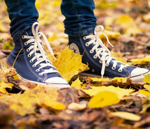 autumn-boy-converse-cute-573712.jpg